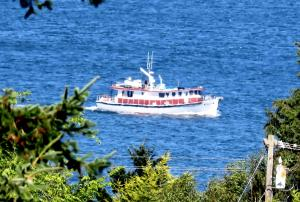Photo of SONNY BOY ship