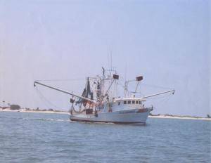 Photo of FAIR MAIDEN ship