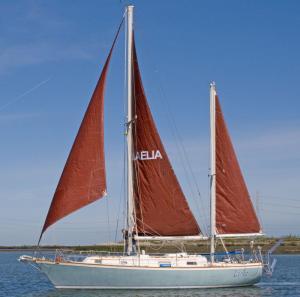 Photo of LAELIA ship