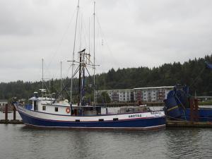 Photo of MCKENZIE ROSE ship
