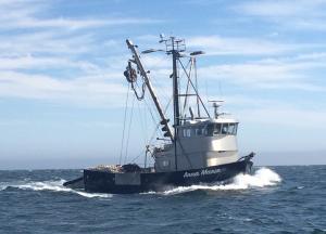 Photo of ANNA MARIE ship