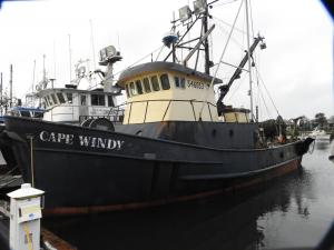 Photo of CAPE WINDY ship