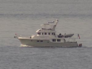 Photo of TANGLEWOOD ship