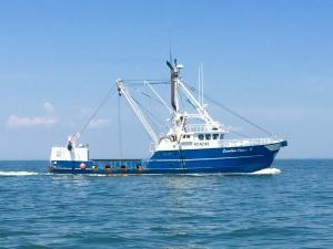 Photo of CAROLINA CAPES II ship