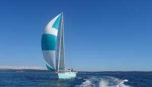 Photo of PAZZO ship