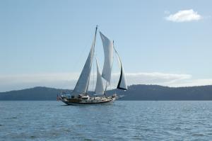 Photo of SASSAFRASS ship