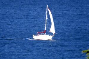 Photo of COURIER ship
