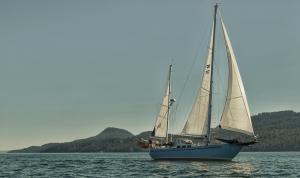 Photo of SMALL WORLD ship