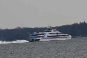 Photo of GREY LADY IV ship