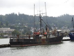 Photo of MOLLY ANN ship