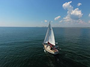 Photo of SALTY ABANDON ship