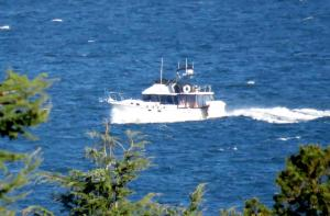 Photo of PIPE DREAM ship