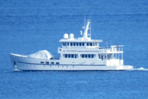 Photo of SURFBIRD ship
