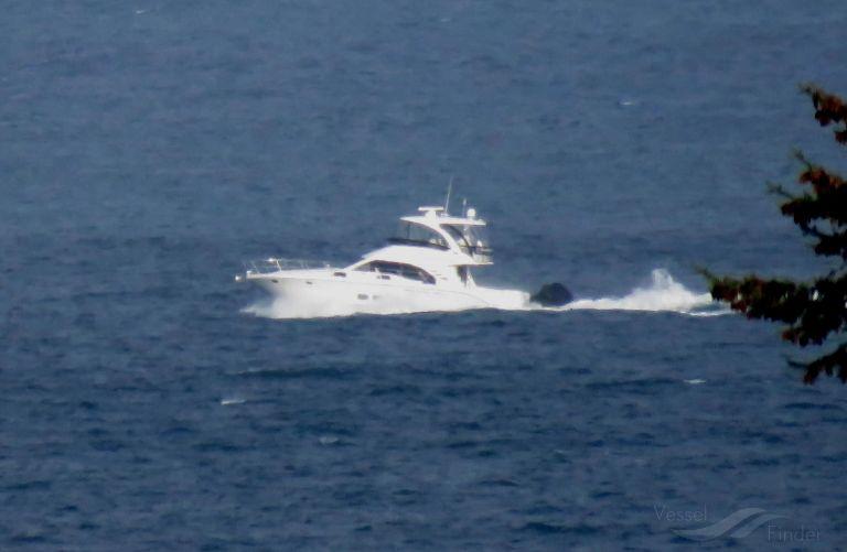 O SEA D photo