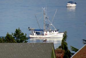 Photo of MYRIAD ship