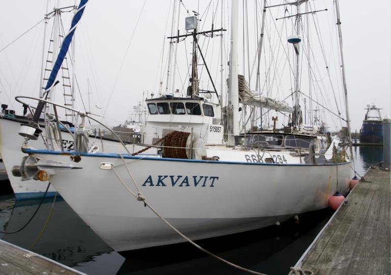 AKVAVIT photo