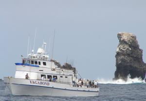 Photo of VAGABOND ship