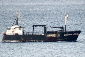 PATRICIA LEE (IMO N/A) Photo