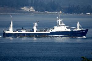 Photo of ARCTIC STORM ship