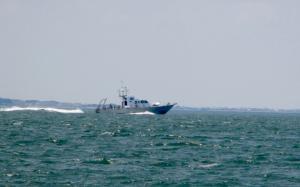 Photo of SRVX SAND TIGER ship