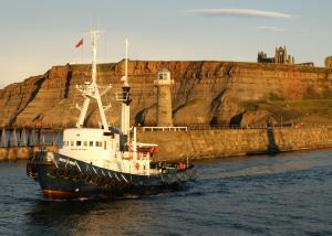 Photo of BALTIC WARRIOR ship