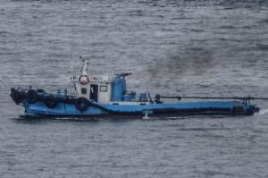 Photo of YIN TING ship
