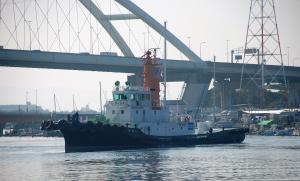Photo of NIKKO MARU ship