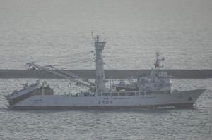Photo of KOYO MARU NO15 ship