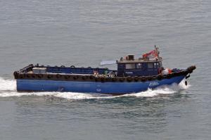 Photo of BEGONIA ship