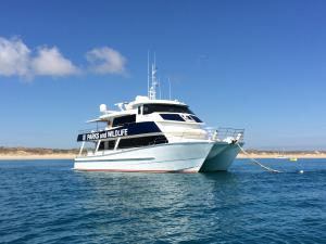 Photo of PV WORNDOOM ship