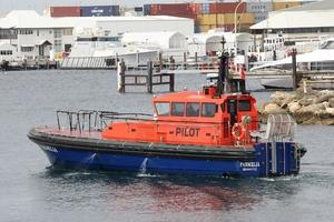 Photo of PARMELIA ship
