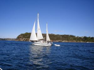 Photo of WAI-O-TIRA ship