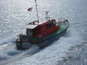 Photo of DARWIN    PILOT ship