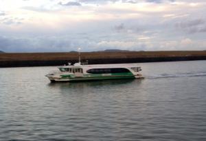 Photo of BRAHMINY KITE ship