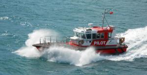 Photo of WLG PILOT TARAKENA ship