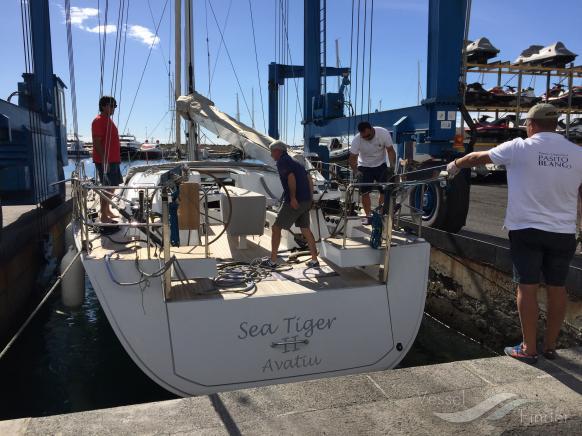SEA TIGER II photo