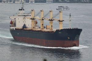 Photo of AYLA ship