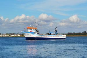 Photo of VIMAR II ship