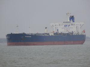 Photo of PETROZAVODSK ship