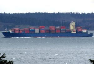 Photo of HYUNDAI PLATINUM ship