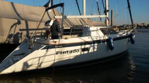 Photo of PINTADO ship