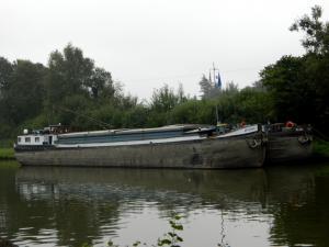 Photo of ARIZONA-I; ship