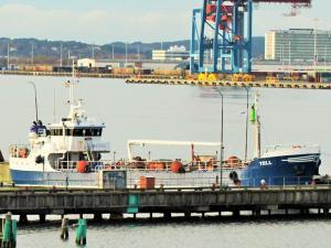 Photo of STEINAR HALTBAKK ship