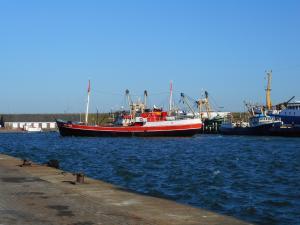 Photo of TRIP JUNIOR ship