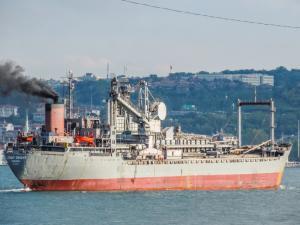 Photo of LEVANT ORIENT ship