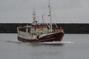Photo of HAMAR ship