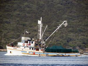 Photo of NAPREDAK ship