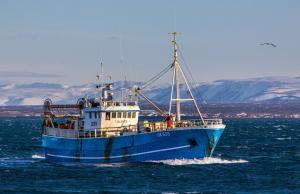 Photo of JALDANES ship