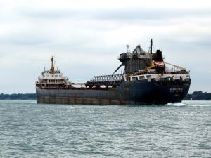 Photo of ALGOSTEEL ship