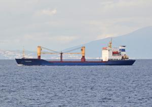 Photo of VYSOKOGORSK ship